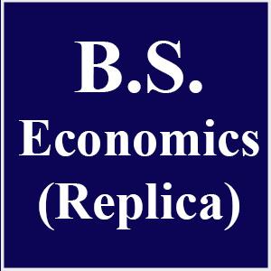 BS in Economics (Replica)